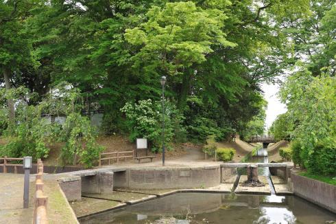 新緑の江連用水宮裏両樋