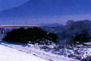 冬の風景 写真