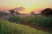 朝霧の小貝川