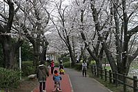 砂沼広域公園01