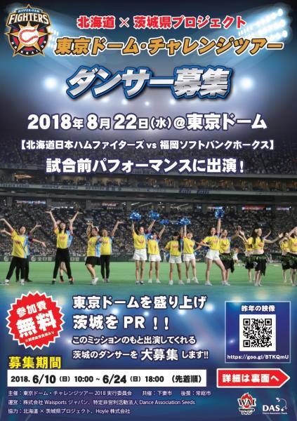 東京ドームチャレンジツアー