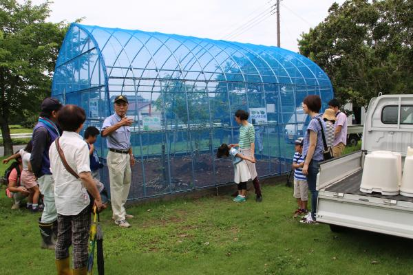 H30.6.24_オオムラサキ観察会‗観察小屋